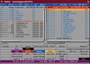 s_worker.jpg (9053 bytes)