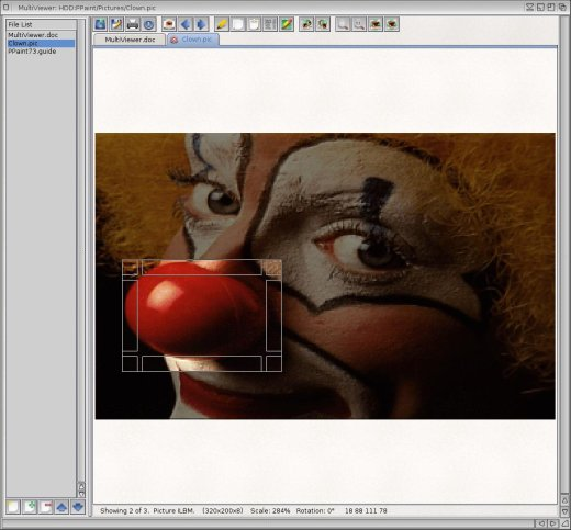 MultiViewer